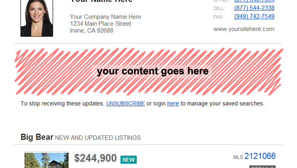 idx email screenshot with custom content placement